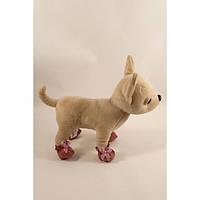 Башмачки замшевые - одежда и обувь для собачек Чи Чи Лав (Chi Chi Love)