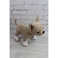 Башмачки к пижамке - одежда и обувь для собачек Чи Чи Лав (Chi Chi Love)
