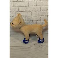 Башмачки синие - одежда и обувь для собачек Чи Чи Лав (Chi Chi Love)