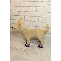 Башмачки фиолетовые - одежда и обувь для собачек Чи Чи Лав (Chi Chi Love)