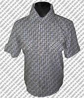 Пошив корпоративных рубашек и блузок