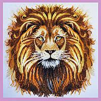 Набор для вышивки бисером Царь зверей P-281