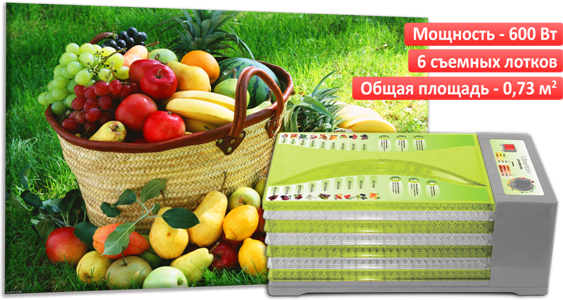 Сушка для фруктов Liberton LDH 0606-01M - ТЕХНОЛЮКС в Запорожье