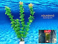 """Растение """"Aplant"""" - 20см, F 20"""