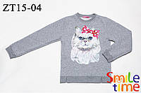 Свитшот для девочки детский утепленный р.98,104,110,116,122 SmileTime Cats, светло-серый