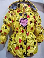 Яркая курточка для девочек  в расцветках