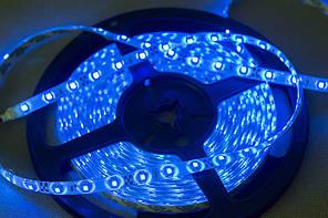 Dilux - Світлодіодна стрічка SMD 3528 60LED/м, негерметична IP33, синя.