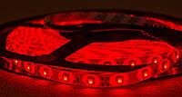 Dilux - Светодиодная лента SMD 3528 60LED/м, влагозащищенная IP65, красная., фото 1