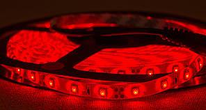 Dilux - Світлодіодна стрічка SMD 3528 60LED/м, вологозахисна IP65, червона.