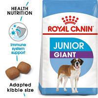 Роял Канин Джайнт Юниор Royal Canin Giant Junior сухой корм для щенков собак гиганских пород 15  кг