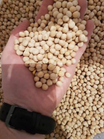 """Семена, посев.мат. гороха """"Грегор"""""""