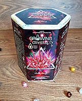 "Научная игра ""Growing Crystal"" GRK-01-03 Danko-Toys Украина"