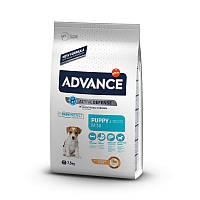Advance Dog Mini Puppy корм для щенков малых пород