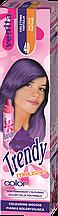 Красящий мусс для волос Venita TRENDY COLOR 40 Фиолетовая  фантазия