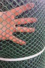 Забор садовый.Ячейка 20х20 мм, рул. 1.5м х 30 м (темно-зеленая).Ромб(Сота), фото 3