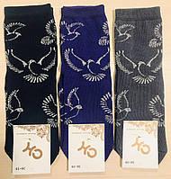 Носки женские демисезонные из хлопка Житомир ТМ СН размер 23-25(36-40) ассорти