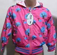 Веселая курточка на манжете для девочек 1-4 лет