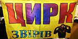 Разработка макета флага. Флаг с логотипом в Киеве, фото 3