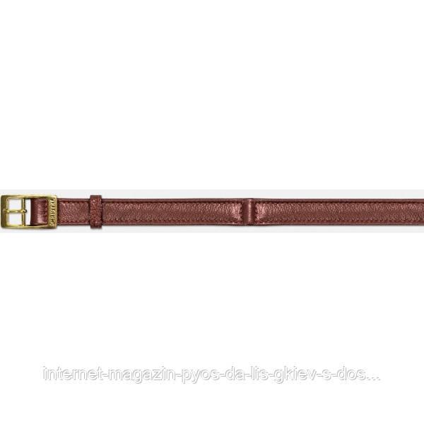 Кожаный ошейник (12 мм\30 см)