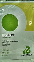 Семена Огурца Кибрия F1 сверхранний  самоопыляемый гибрид 10 семян Rijk Zwaan Голландия