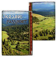 Обложка для паспорта с пейзажем