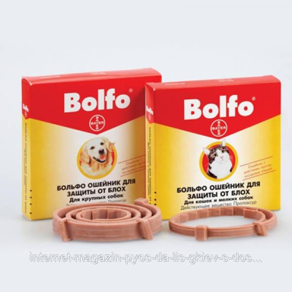 (Bayer) Bolfo cat Байер Больфо ошейник для кошек, 1 уп.