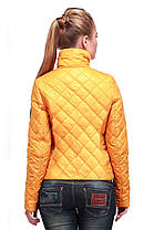 Стильная женская осенняя куртка арт. Лаура, фото 3