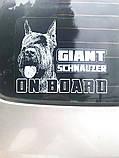Стикер на авто / машину Ризеншнауцер (Giant Schnauzer On Board), фото 2