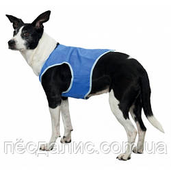 Охлаждающий жилет для собаки, XS (20 см)