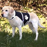 Жилет безопасности для собак (60–80 см), 1 шт