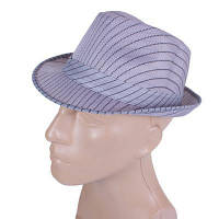 Шляпа Cruise Шляпа мужская CRUISE (КРУИЗ) 041403.062A-07