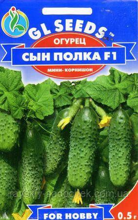 Огурец Сын полка F1.0,5г.Среднеранний.