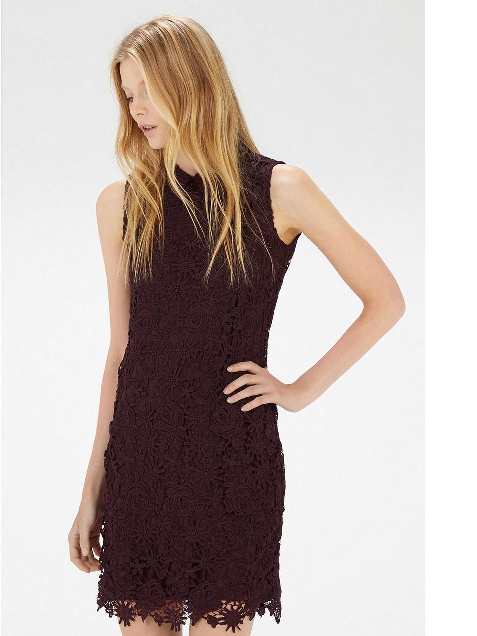 Новое кружевное платье с воротником прямого кроя Warehouse