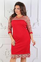 Женское нарядное платье с гипром 50,52,54рр. красное с белым костюмка, фото 1