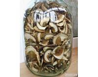 УВАГА!!!Карпатські білі гриби