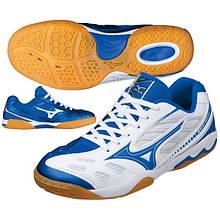 Кросівки для сквошу, бадмінтону і настільного тенісу