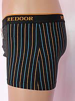 Трусы   Redoor  167380, фото 1