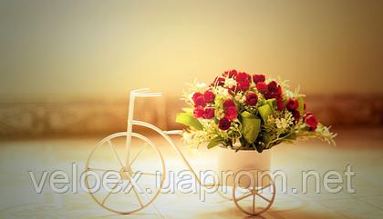 Краткая информация о производителях велосипедов