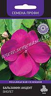 Бальзамін Акцент Віолет, вис.25-30см, невибагливий, формує безліч великих квіток пурп.фарбування.