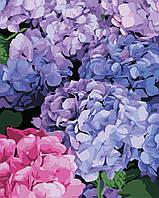 Художественный творческий набор, картина по номерам Цветущая гортензия, 40x50 см, «Art Story» (AS0334), фото 1
