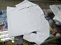 Реглан детский белый Школа р.116 - 134