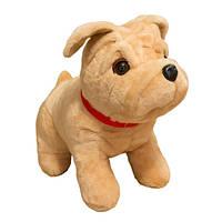 Мягкая игрушка собака бульдог сидячий маленький 38см (012)
