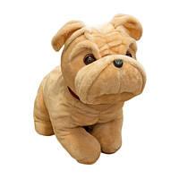 Мягкая игрушка собака бульдог сидячий большой 49см (011)