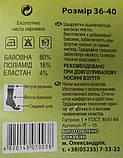 Носки женские Житомир , фото 2