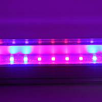 Светильник Led T8 1,2м 16W R:B=4:2 ( 4 красных 2 синих ФИТО свет ) для растений