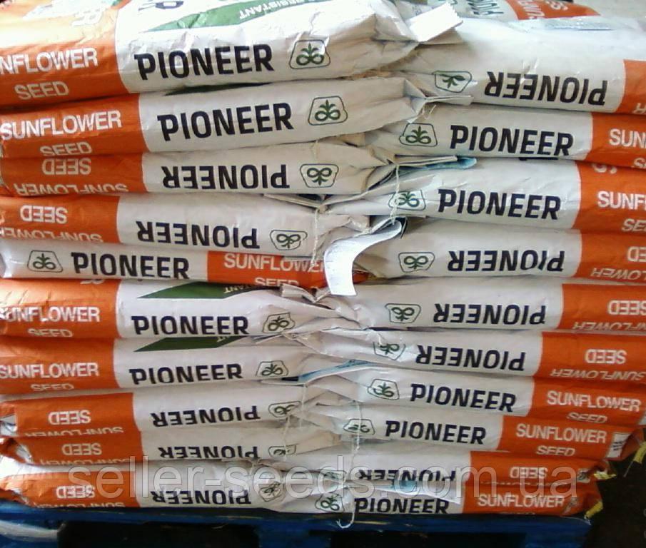 Семена подсолнечника PR64F66 (ПР64Ф66)
