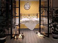 Металлическая кровать Диасция двухспальная, фото 1