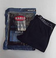 Термо штаны, кальсоны, подштаники с ластовицей, мужские Amigo, Karlo