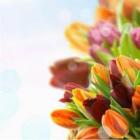 C днем Весны всех нас,любимых!!!