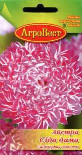 Цветы Астра пионовидная Седая дама (пурпуровая) 0,3 г (АгроВест), фото 2